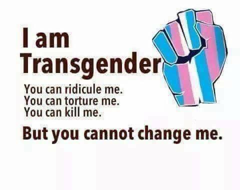 I am transgender. You can ridicule me. You can torture me. You can kill me. But you cannot change me.