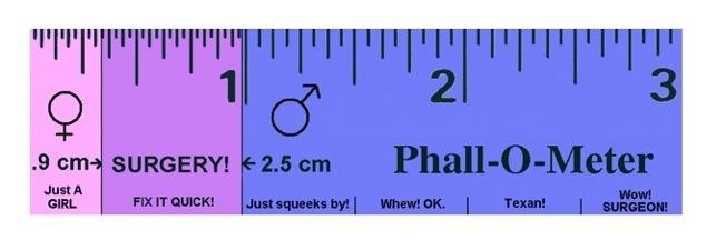 sexuality-body-phallometer-funny